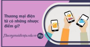 faq-thuong-mai-dien-tu-co-nhuoc-diem-gi